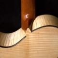 a.j.lucas luthier-instrument photo 2.jpg