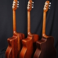 ajl-guitars-instrument photo 2.jpg
