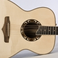 bachmann guitars & tonewood-instrument photo 2.jpg