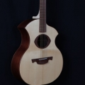 danou-guitars-instrument photo 1.JPG