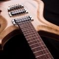 devils choice-guitar-bass for catalogue.jpg