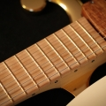 di donato guitars-instrument photo 1.jpg