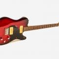 franfret guitars-instrument photo 1.jpg