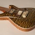 frank hartung guitars-instrument photo 1