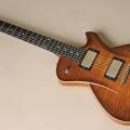 frank hartung guitars-instrument photo 2