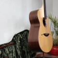 guitare & cie stepinhut-instrument photo 2.jpg