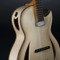 heeres guitars-instrument photo 1.jpg