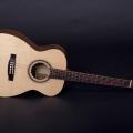heeres guitars-instrument photo 2.jpg