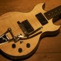 hilko guitars-instrument photo 1.jpg