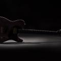leo guitars-guitar-bass for catalogue.jpg