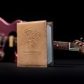 leo guitars-instrument photo 1.jpg