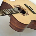 letain guitars-instrument photo 1.jpg