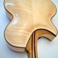 letain guitars-instrument photo 2.jpg