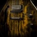 mion guitars-guitar-bass for catalogue.jpg