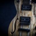 mion guitars-instrument photo 1.jpg