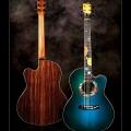 Manzer Guitars-instrument photo 2.jpg