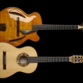 melo guitars-instrument photo 1.jpg