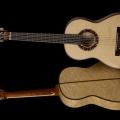 melo guitars-instrument photo 2.jpg