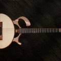 mervyn davis guitars-instrument photo 2.jpg