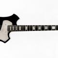 Orn-guitar-bass for catalogue.jpg