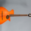 pagelli gitarrenbau-guitar-bass for catalogue.jpg