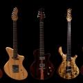pmc guitars-instrument photo 2.jpg