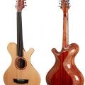 pmc guitars-instrument photo.jpg