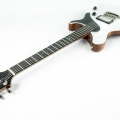 quenzel custom guitars-instrument photo 2.jpg