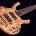 rikkers guitars-instrument photo 1.jpg