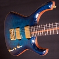 rikkers guitars-instrument photo 2.jpg