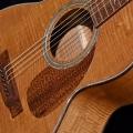 rozawood-instrument photo 1.jpg